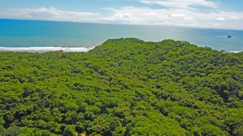 These lots are walking distance from the beach.